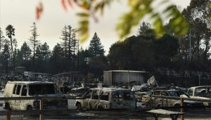 Death toll rises to 31 in California wildfire, hundreds still missing.
